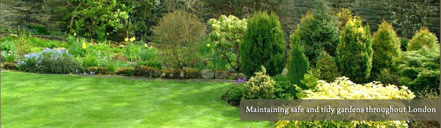 Cheap gardener london green 39 s mobile gardening services for Garden maintenance london